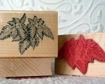 Boston Fern Plant rubber stamp from oldislandstamps