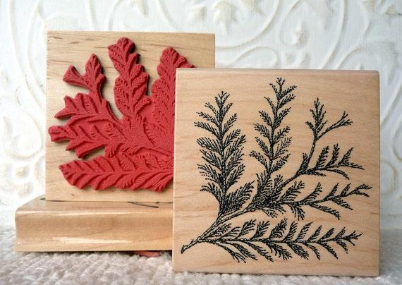 Cedar Branch Rubber Stamp From Oldislandstamps From