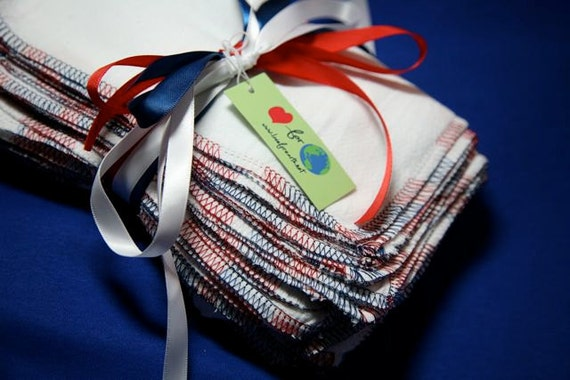 4th of July Picnic Napkins one dozen