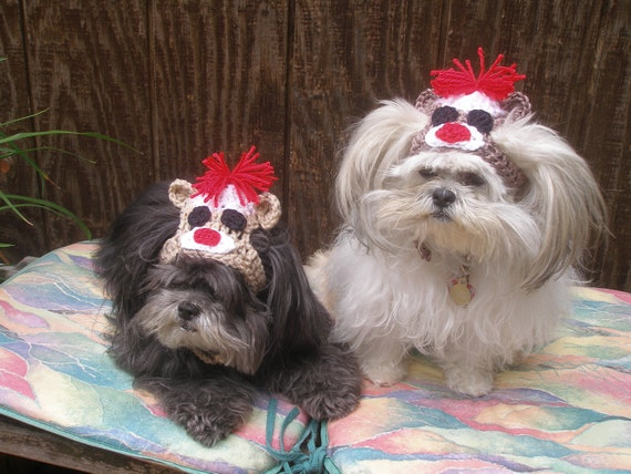Dog hat - SOCK MONKEY - Humorous - Choose color - 2 to 20 lb pets - need measurement
