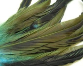12 PCS Green/Blue Strung Natural COQUE TAIL Feathers