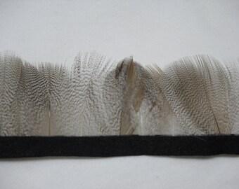 12 PCS NATURAL Mallard Duck Flank Feathers