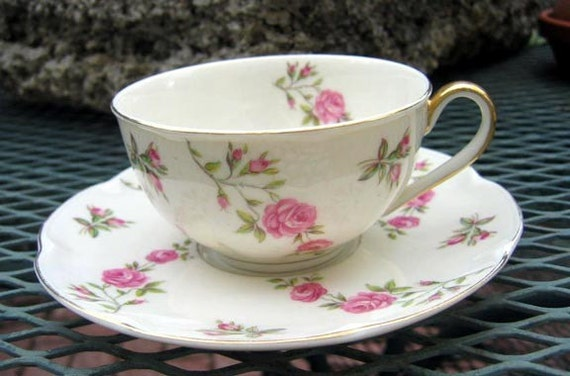 Theodore Haviland Cup & Saucer Delaware Pattern