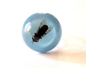Gadfly - Resin ring - Size M