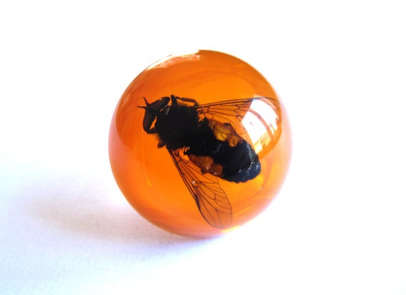 3-Day - SALE -  Horsefly - Resin ring - Size M