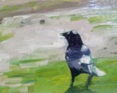 Crow Looking Forward, Original framed 5x7 inch oil painting, bird impressionist style, Buy 2 Get 1 SALE