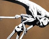 Dinosaur vs. Robot - Dynonicus
