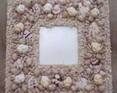 Seashell mirror frame at High Tide
