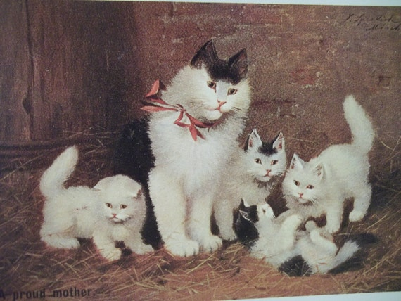 Proud Momma Cat with Fuzzy Baby Kittens - Vintage Cat Postcard - Vintage Reproduction