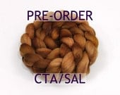 "PRE-ORDER - CTA Spinalong - ""Copper"" in Polwarth/ Silk"