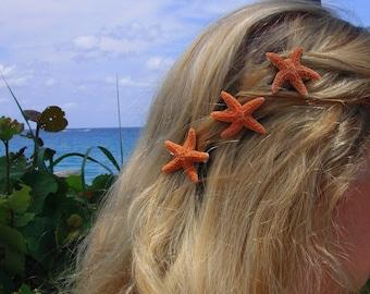 Set of 3 small sugar starfish barrettes