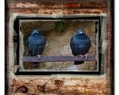 ANCIENT EYES - 5X5 - ORIGINAL FINE ART PHOTOGRAPHY