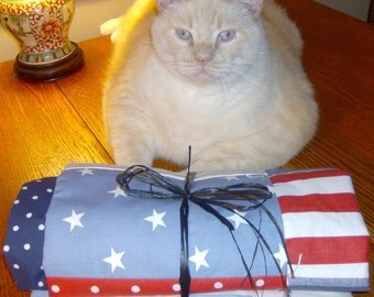 """Fabulous Americana...Oh so very red, white & blue scrappy quilt for your """"4 paws n tail"""" friends to be cozy while snoozing anywhere!"""