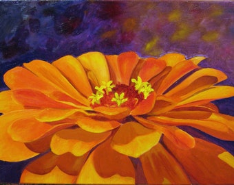 Orange Zinnia on Purple Print