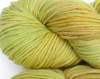 March Hare hand dyed worsted weight yarn, 4ply superwash merino, 100g 220yds - Horned Melon 1