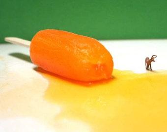Popsicle Pond- 5x5 Metallic Print