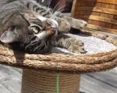 Nautical Cat Scratcher