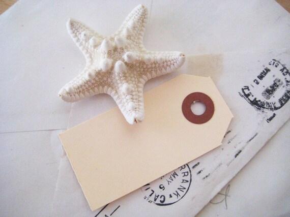 Blank Manila Gift Tags - set of 25 in Cream - Mini