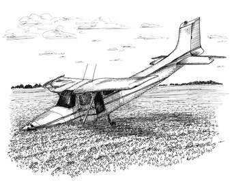 Southern Discomfort Crash Landing Aviation Airplane Drawing Print