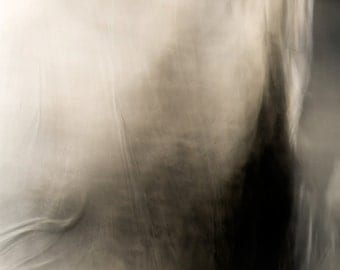 Number 314.  Fine Art Photograph. Limited Edition Print. Giclee