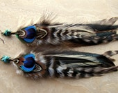 Feather Earrings - Peacock, Pheasant and Rooster Feathers - Tribal Queen