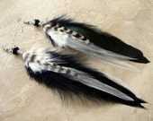 Feather Earrings - Black and White Feathers - Shadow