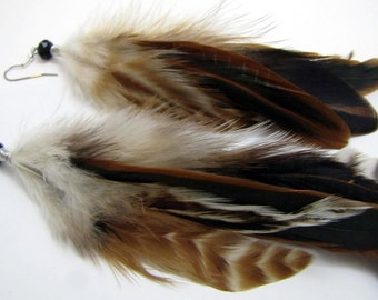 Feather Earrings - Natural Brown and Black Feathers - Starling