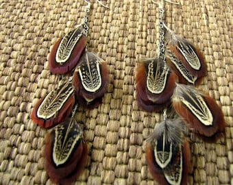 Feather Earrings - Natural Brown Feathers, Pheasant Feather Earrings - Autumn Sky