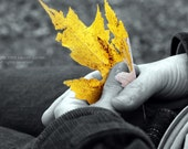 As Time Goes By - Yellow Black and White Leaf Autumn Photography Fall Hands Love Fine Art Print - Photograph