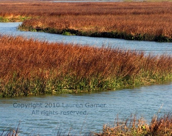 Marsh - Charleston SC South Carolina Photography Lighthouse Sullivans Island Blue Brown Green Fine Art Wall Hanging - 8x10 Photograph