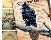 Digital sheet  RAVEN CARD magic victorian era book vintage crow bird gothic halloween october postcard grunge / AC199