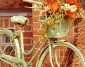 Rustic Bike Photograph, Autumn Bicycle 5x5 Print, Fall Flowers Photoo, Bicycle Photo, Orange Color, Wall Art