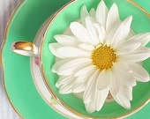 Flower, Teacup, Photograph, Mint, Green, White, Yellow, Daisy Photo, Whimsical, Kitchen Decor,  Bright, Retro, Vintage, Cheerful