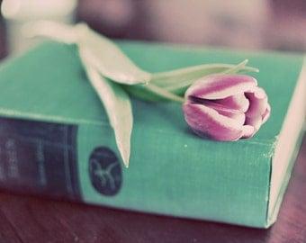 Tulip on Book Photograph, Still Life Photography, Fine Art Print, Mint Green, Flower Photo, Book Photo, Home Decor, Wall Art