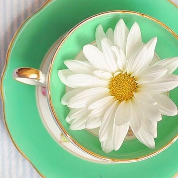 Daisy Kitchen Decor: Items Similar To Flower, Teacup, Photograph, Mint, Green