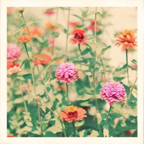 Flower Garden Photograph, Retro Colors, Cottage Decor, Kitchen Decor, Summer Photograph, Fine Art Print, Nature Photography
