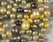 Pearl Mix  Brown Iris, Yellow & Champagne Colorwave - Over 255 beads (220)