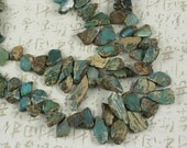 "LAST Graduated Aqua Terra Jasper Freeform Polished Sliced Top Drilled Drop Beads 16"" (5126)"