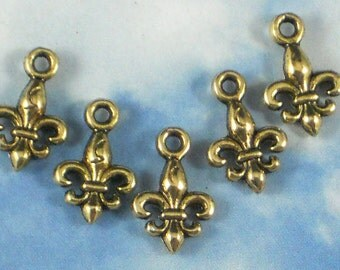 20 Tiny Fleur de Lis Charms 15mm Gold Tone Two Sided - Perfect for Earrings (P928)