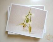 Flower postcard 04 / Multi-use Greeting Card