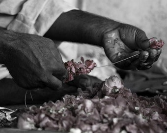 Photograph Black and White Pakistani Man Hands Stringing Together Light Dusty Pink Rose Flower Petals Cultural Travel Art Print Home Decor