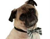 Festive Dog Bowtie