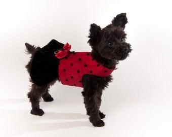 Dog Harness Dress - Lady Bug