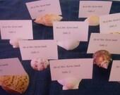 Sea Shell 10 Wedding Seashell Natural Escort Table Place Card Holder
