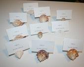 Sea Shell Beach Wedding Seashell Natural Escort Table Place Card Holder