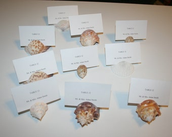 Sea Shell Beach Wedding Seashell Natural Escort Table Place Card Holder