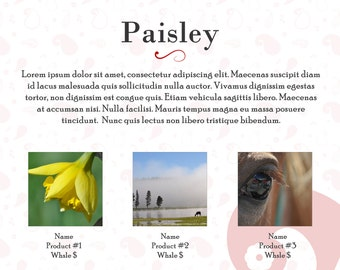 Line Sheet or Wholesale Catalog template for product publicity- Paisley design