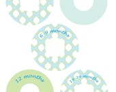 Baby Closet Dividers Organizer Clothing Dividers-  SPROUT