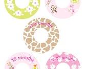 Custom Closet Dividers  -  JUNGLE for girls elephant monkey giraffe