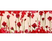 Field of Red Flowers Commission- Open to See Whole Image- by Kristen Dougherty